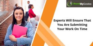 Experts Will Ensure That You Are Submitting Your Work On Time
